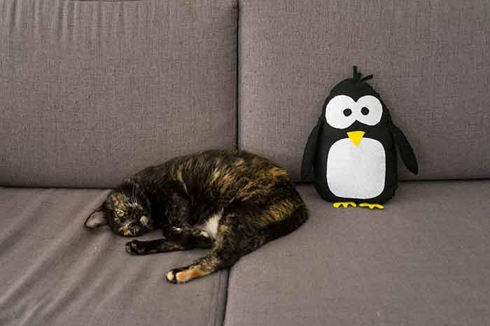 DIY-pingvin-felt-and-cat