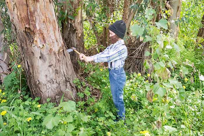 Lumberjack-DIY-costume-in-wood
